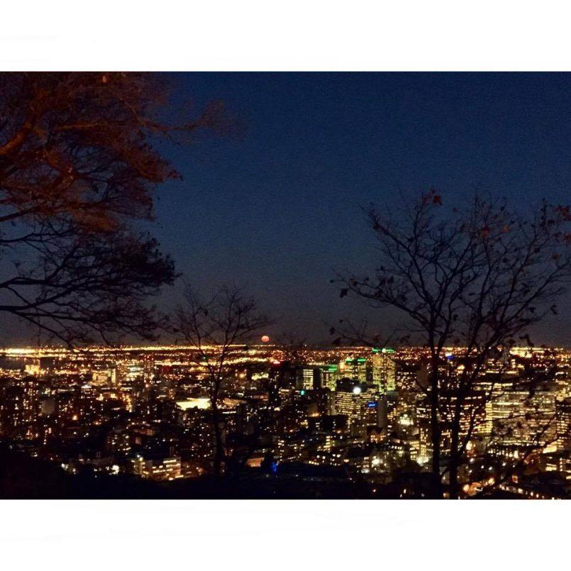 Depuis les champs jusqu'à Montréal | Les Roger - Le blogue des étudiants de l'UdeM