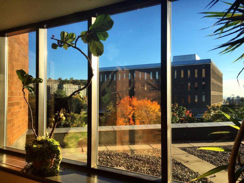L'art d'être en retard dès le réveil | Les Roger - Le blogue des étudiants de l'UdeM