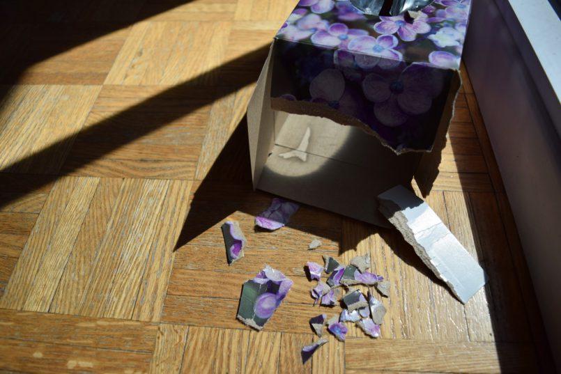 Avoir une mauvaise note, ou comment en faire le deuil - La colère| Les Roger - Le blogue des étudiants de l'UdeM